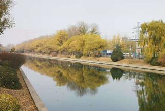 尹军琪 | 散文:北京的秋色